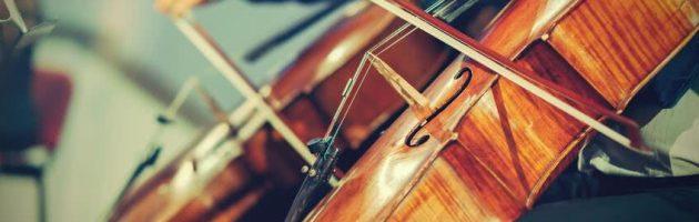 Assurance pour les instruments de musique : une protection pour les passionnés et les collectionneurs